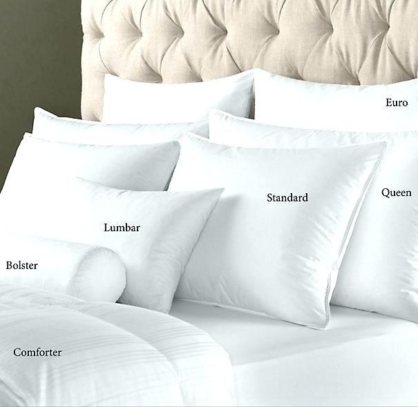 Euro pillows and Standard pillows